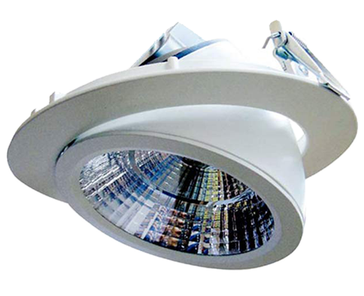 LED Round COB Swivel (H13-30)
