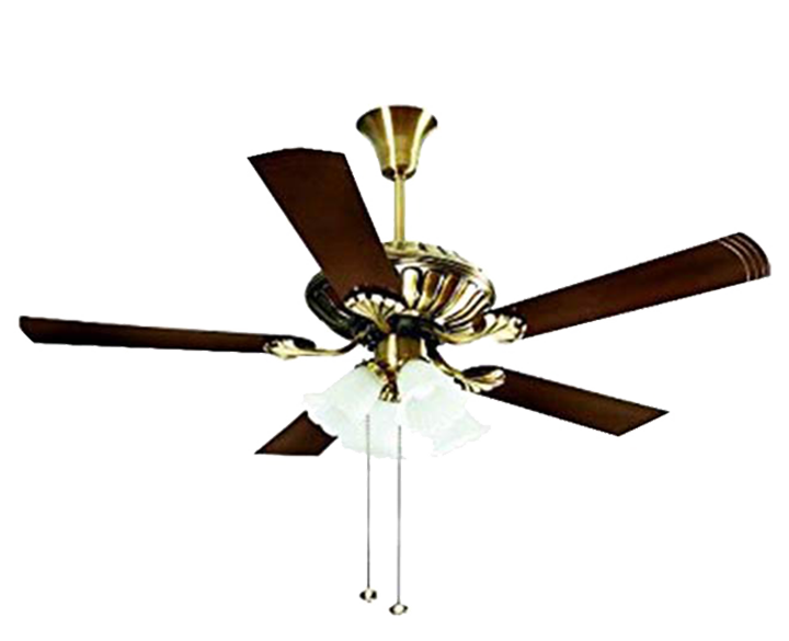 Ceiling Fan Jupiter