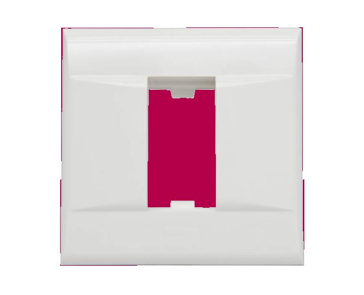 1 Module Plate DSQ