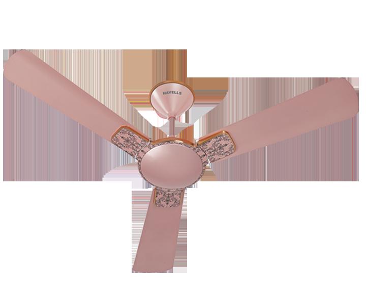 Ceiling Fan Enticer Art