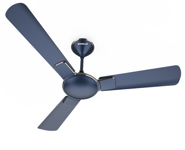 Ceiling Fan Enticer
