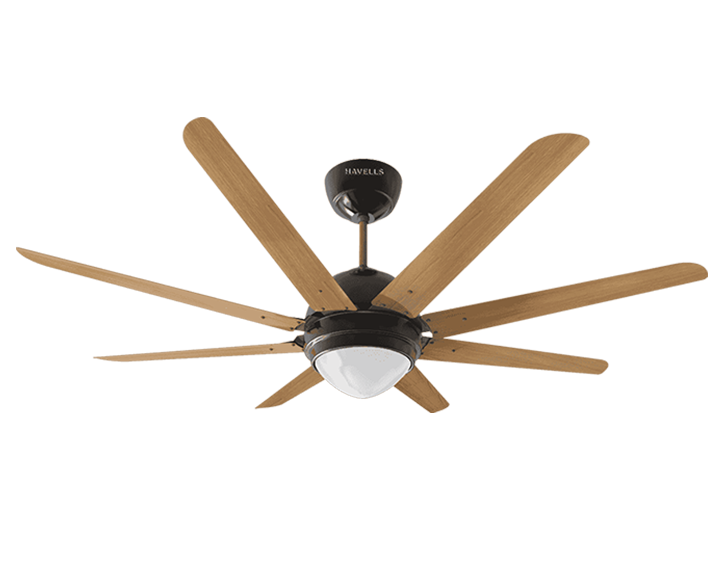 Ceiling Fan Octet Under Light