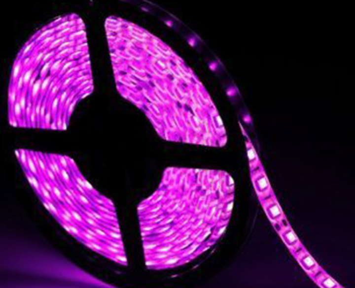 LED Strip 5MTR