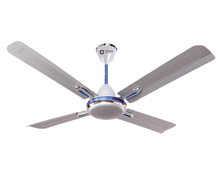Ceiling Fan Quadro Ornamental